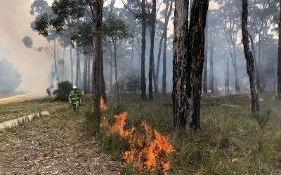 Building a better understanding of bushfire risk-DELWP